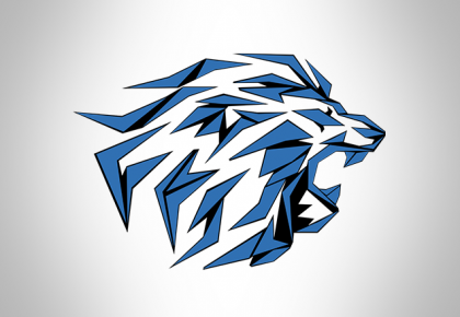 Munich Lions Academy
